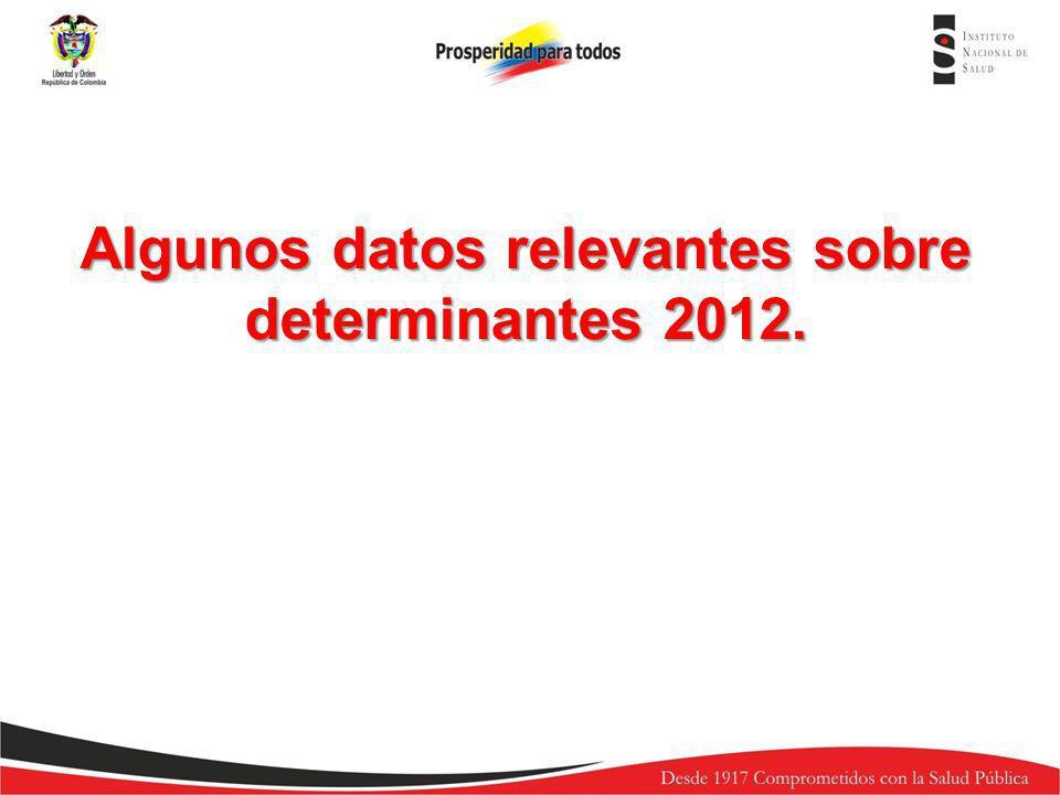 Algunos datos relevantes sobre determinantes 2012.