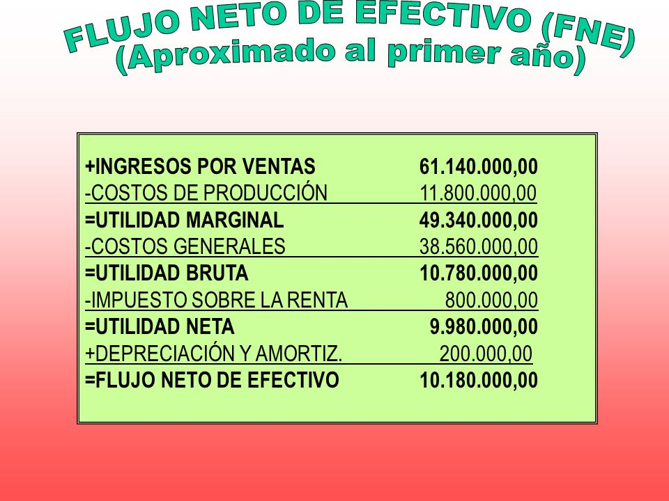 FLUJO NETO DE EFECTIVO (FNE) (Aproximado al primer año)
