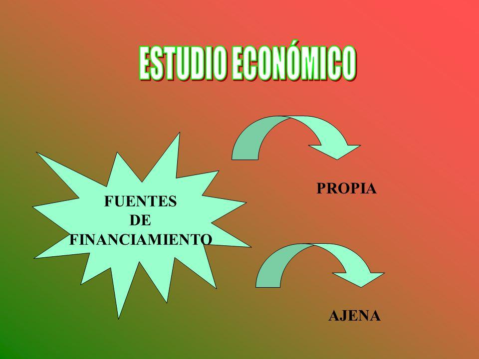 ESTUDIO ECONÓMICO FUENTES DE FINANCIAMIENTO PROPIA AJENA