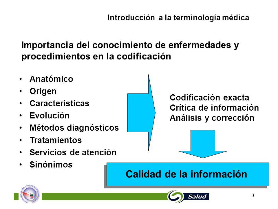 Perfecto Terminología Médica Y Anatomía Para Icd 10 De Codificación ...