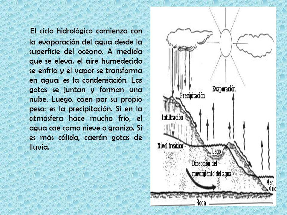 El ciclo hidrológico comienza con la evaporación del agua desde la superficie del océano.