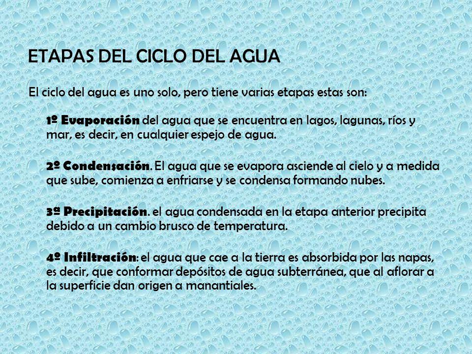 ETAPAS DEL CICLO DEL AGUA