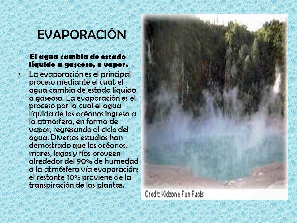 EVAPORACIÓN El agua cambia de estado líquido a gaseoso, o vapor.