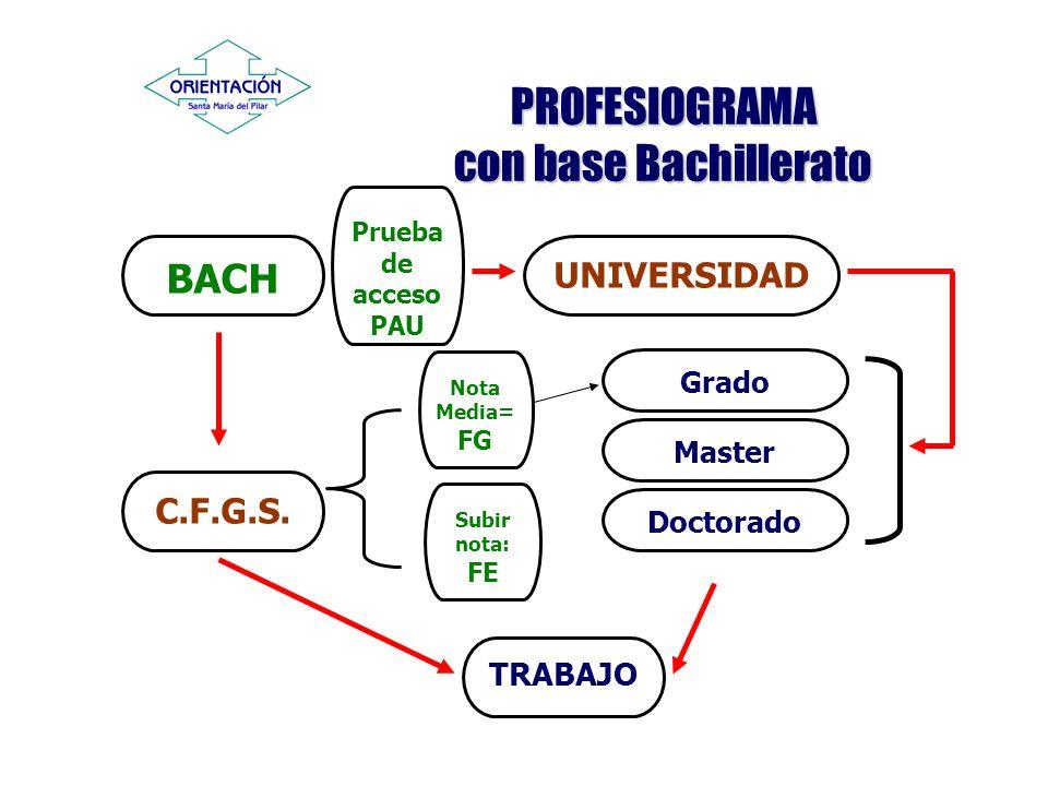 PROFESIOGRAMA con base Bachillerato