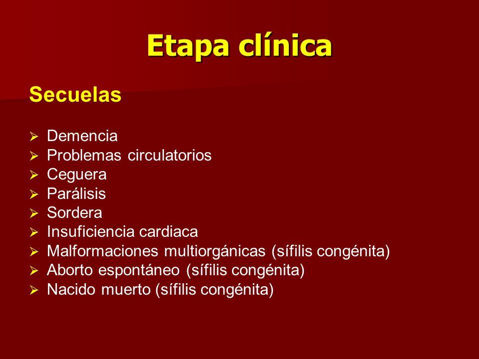 Etapa clínica Secuelas Demencia Problemas circulatorios Ceguera