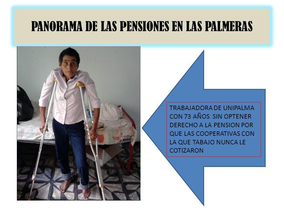 PANORAMA DE LAS PENSIONES EN LAS PALMERAS