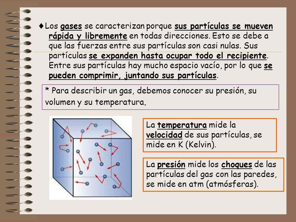 Los gases se caracterizan porque sus partículas se mueven rápida y libremente en todas direcciones. Esto se debe a que las fuerzas entre sus partículas son casi nulas. Sus partículas se expanden hasta ocupar todo el recipiente. Entre sus partículas hay mucho espacio vacío, por lo que se pueden comprimir, juntando sus partículas.