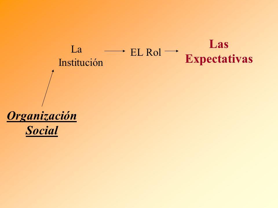 Las Expectativas Organización Social