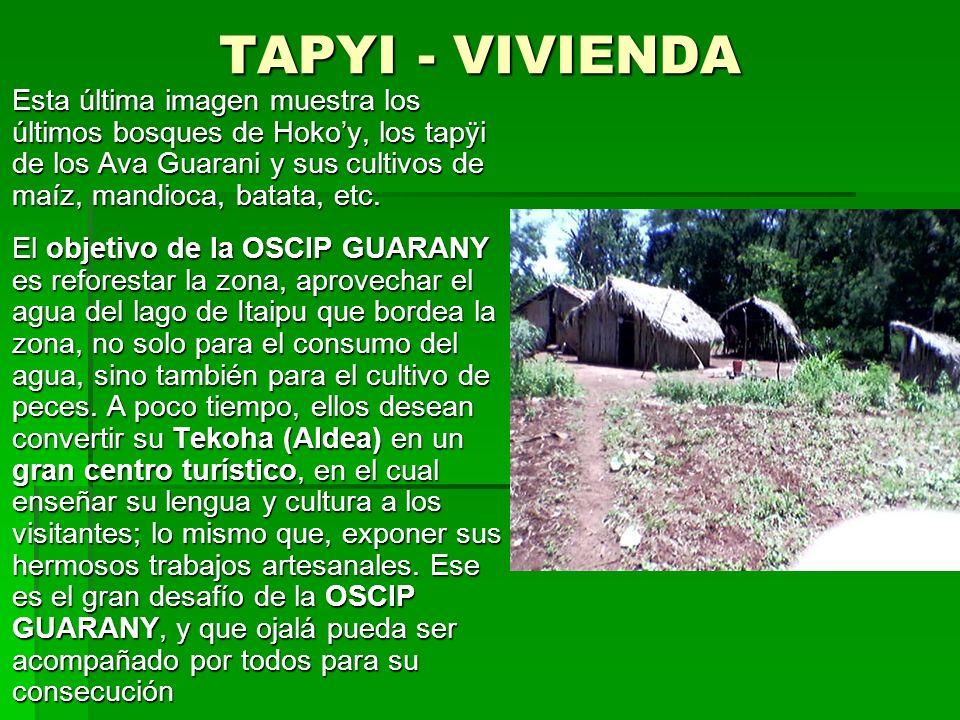 TAPYI - VIVIENDA