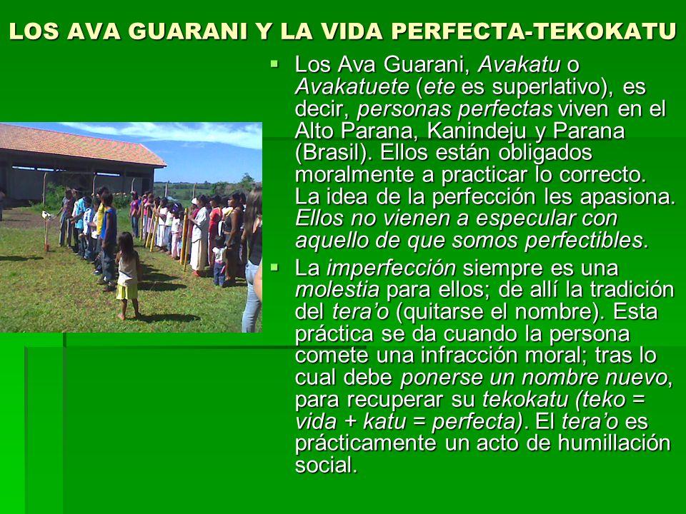 LOS AVA GUARANI Y LA VIDA PERFECTA-TEKOKATU