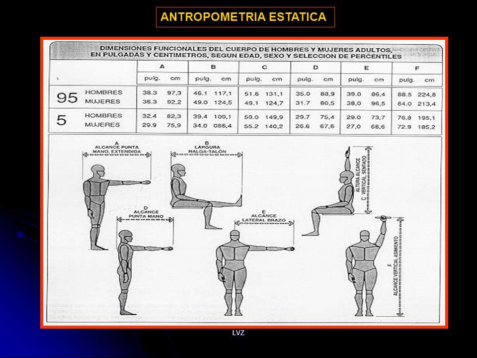Conceptos b sicos msc dr luis v squez z ppt descargar for Antropometria estatica
