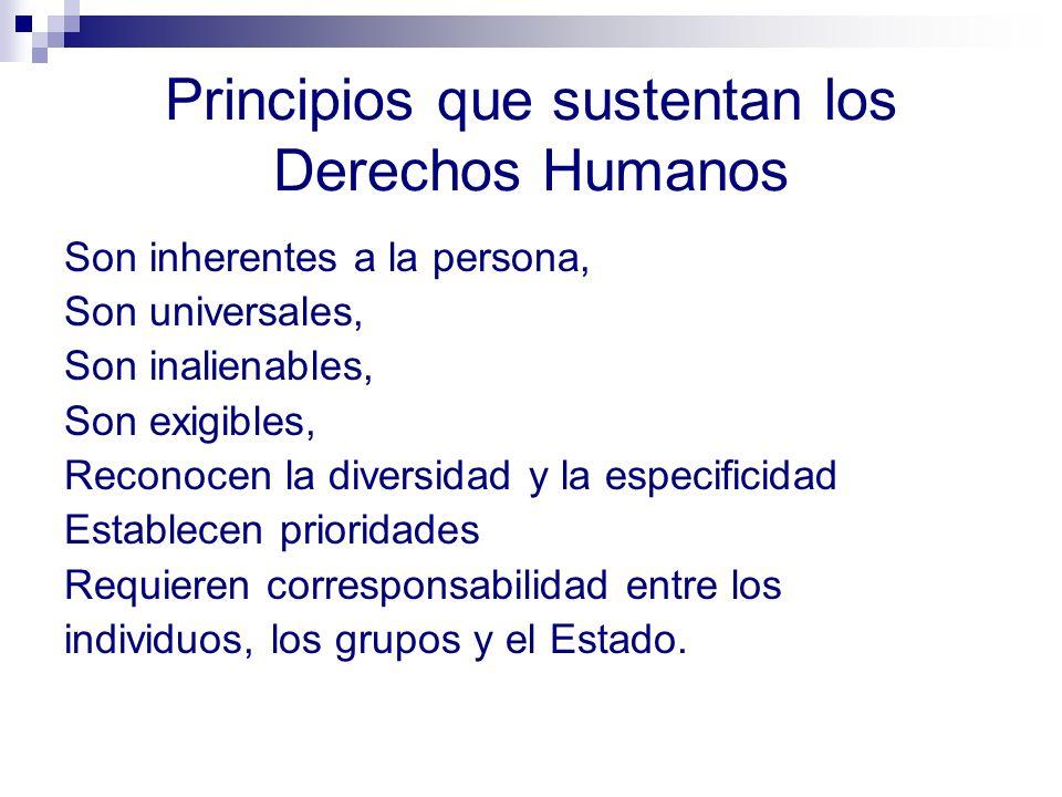Principios que sustentan los Derechos Humanos