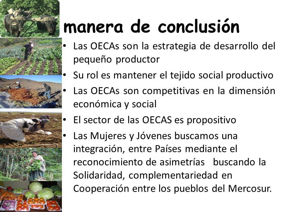 A manera de conclusión Las OECAs son la estrategia de desarrollo del pequeño productor. Su rol es mantener el tejido social productivo.