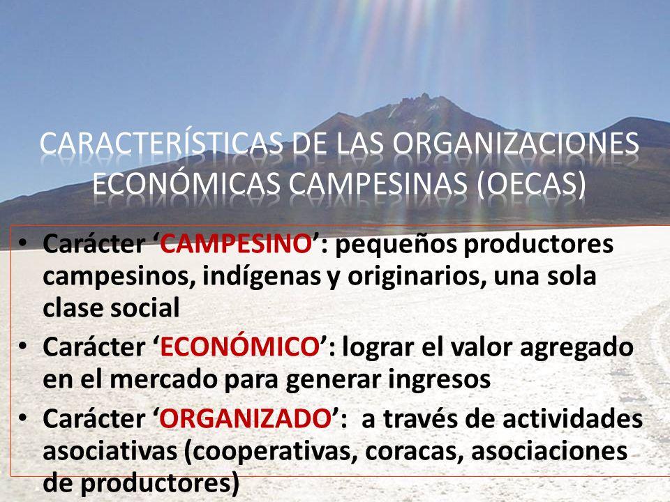 Características de las Organizaciones Económicas Campesinas (OECAs)
