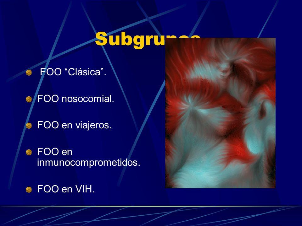 Subgrupos. FOO Clásica . FOO nosocomial. FOO en viajeros.