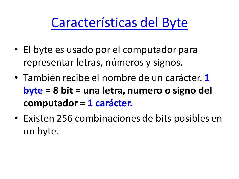 Características del Byte