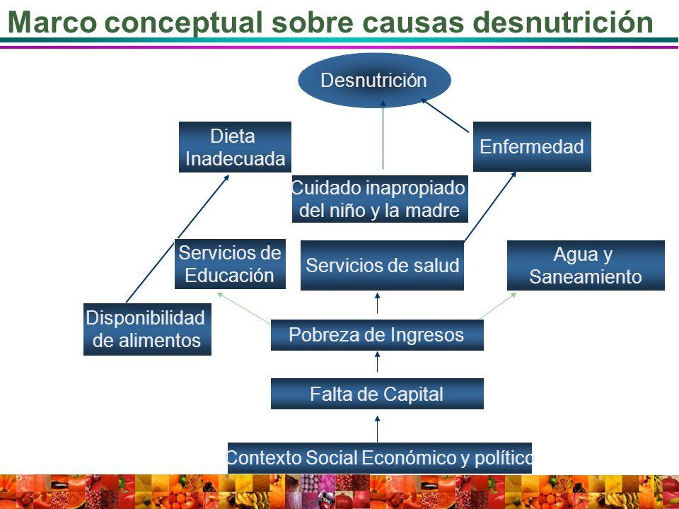 Contexto Social Económico y político