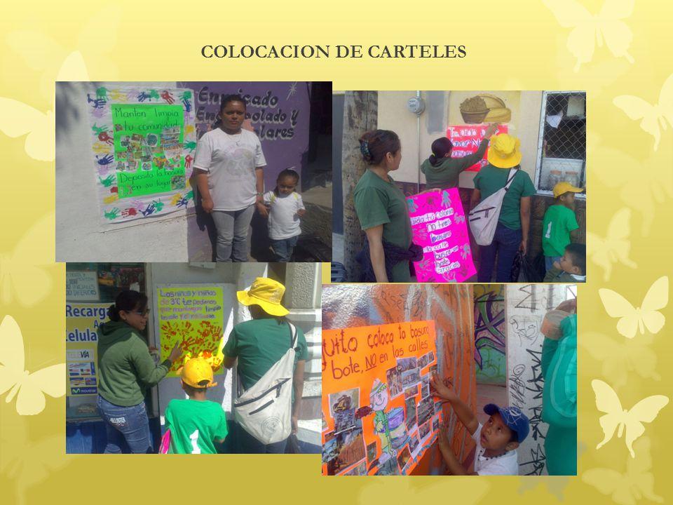 COLOCACION DE CARTELES