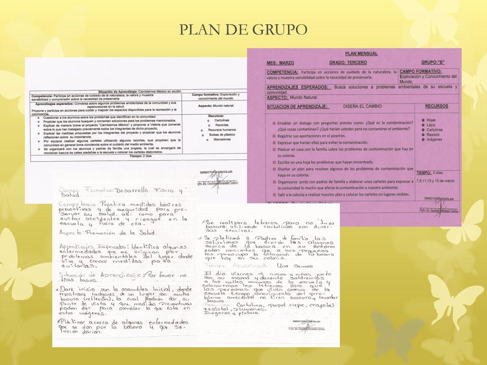 PLAN DE GRUPO