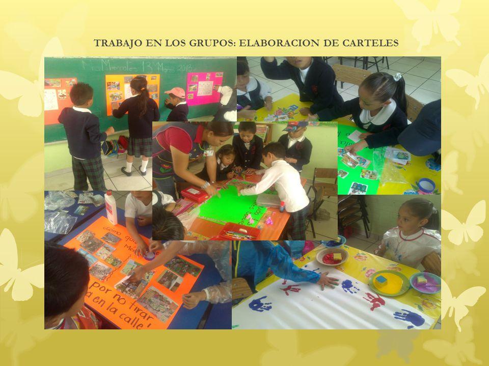 TRABAJO EN LOS GRUPOS: ELABORACION DE CARTELES