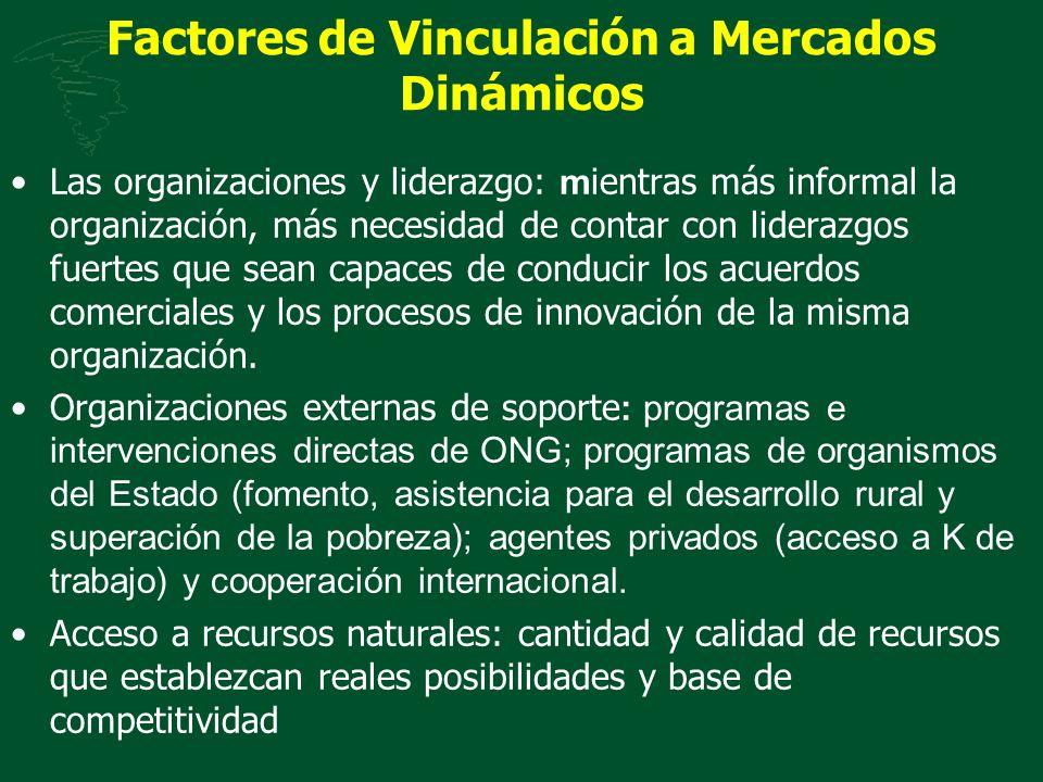 Factores de Vinculación a Mercados Dinámicos