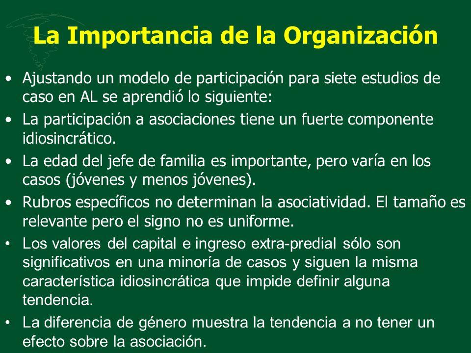 La Importancia de la Organización