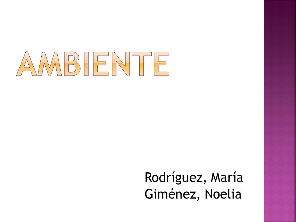AMBIENTE Rodríguez, María Giménez, Noelia