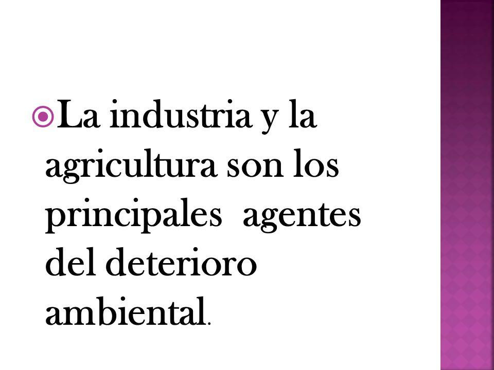 La industria y la agricultura son los principales agentes del deterioro ambiental.