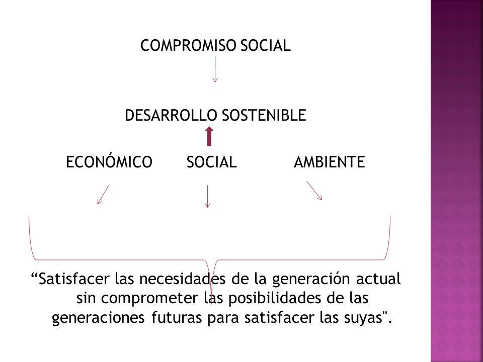 DESARROLLO SOSTENIBLE ECONÓMICO SOCIAL AMBIENTE