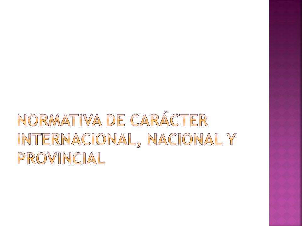 Normativa de carácter Internacional, Nacional y Provincial