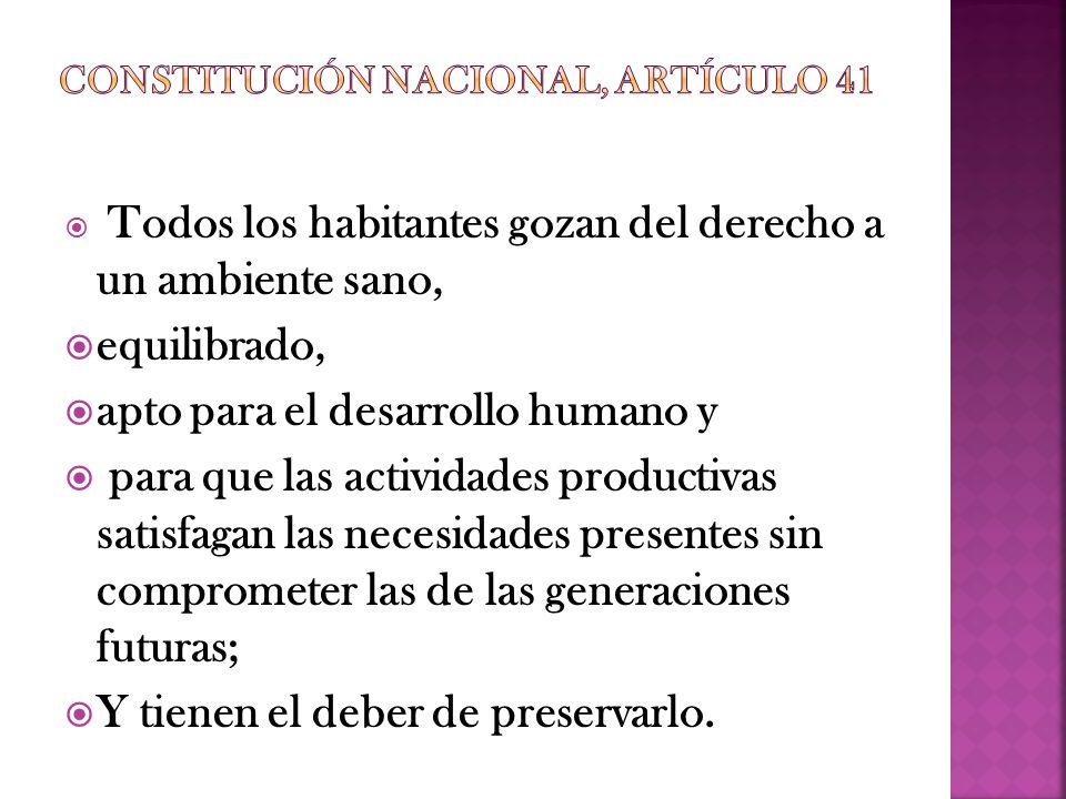 Constitución Nacional, Artículo 41