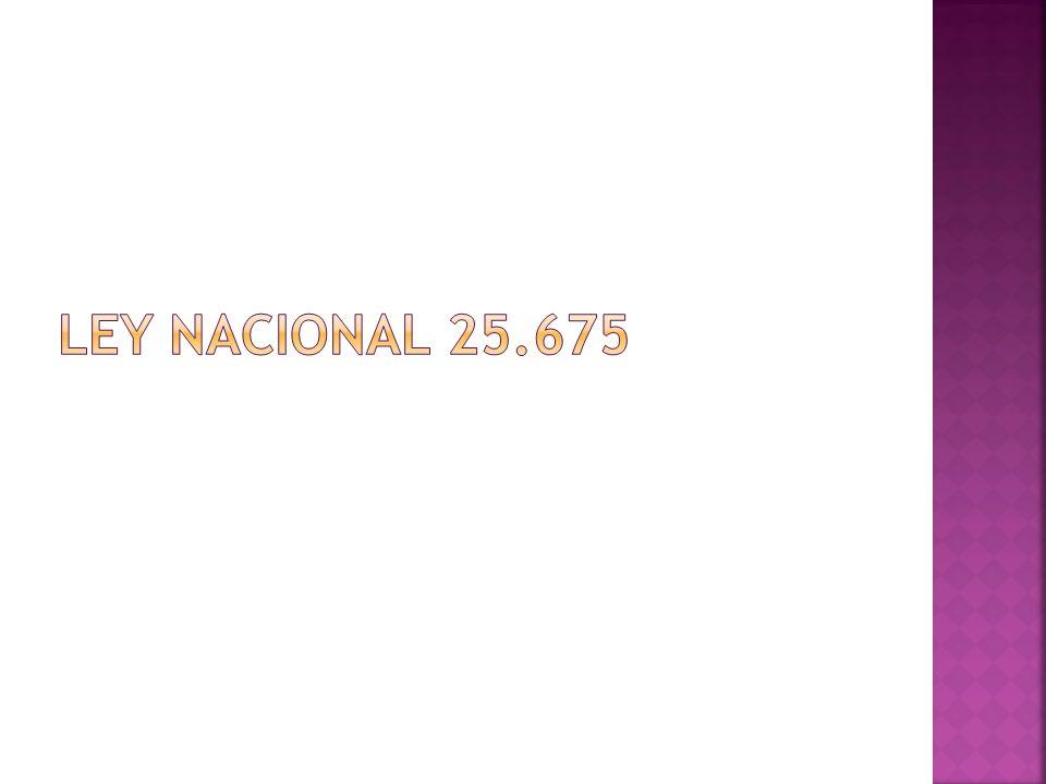 Ley Nacional 25.675