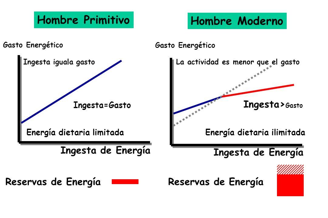 Hombre Primitivo Hombre Moderno Ingesta>Gasto Ingesta de Energía