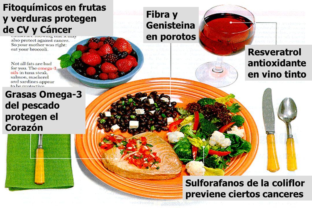 Fitoquímicos en frutas y verduras protegen de CV y Cáncer