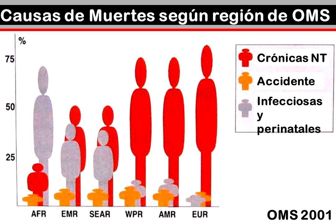 Causas de Muertes según región de OMS