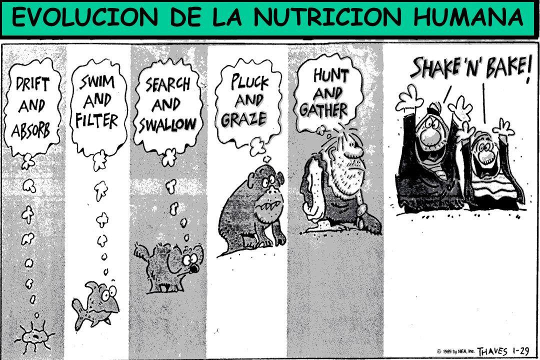 EVOLUCION DE LA NUTRICION HUMANA