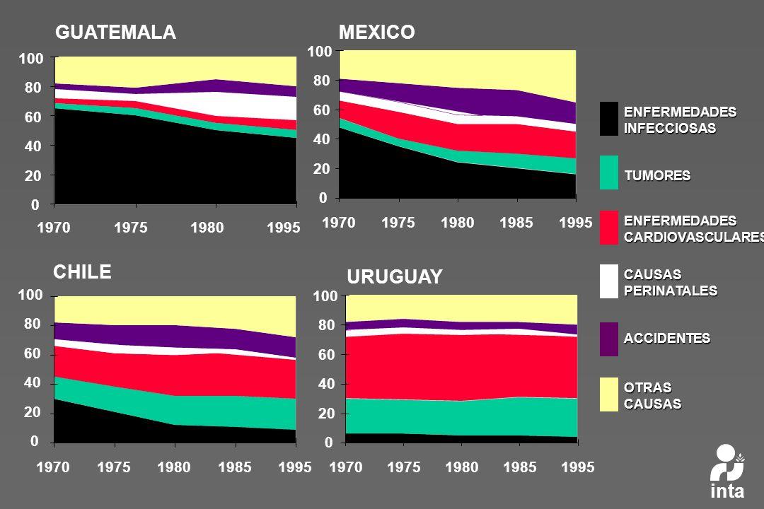 GUATEMALA MEXICO CHILE URUGUAY inta 20 40 60 80 100 1970 1975 1980
