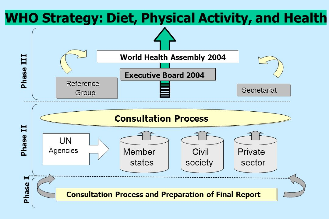 WHO Strategy: Diet, Physical Activity, and Health