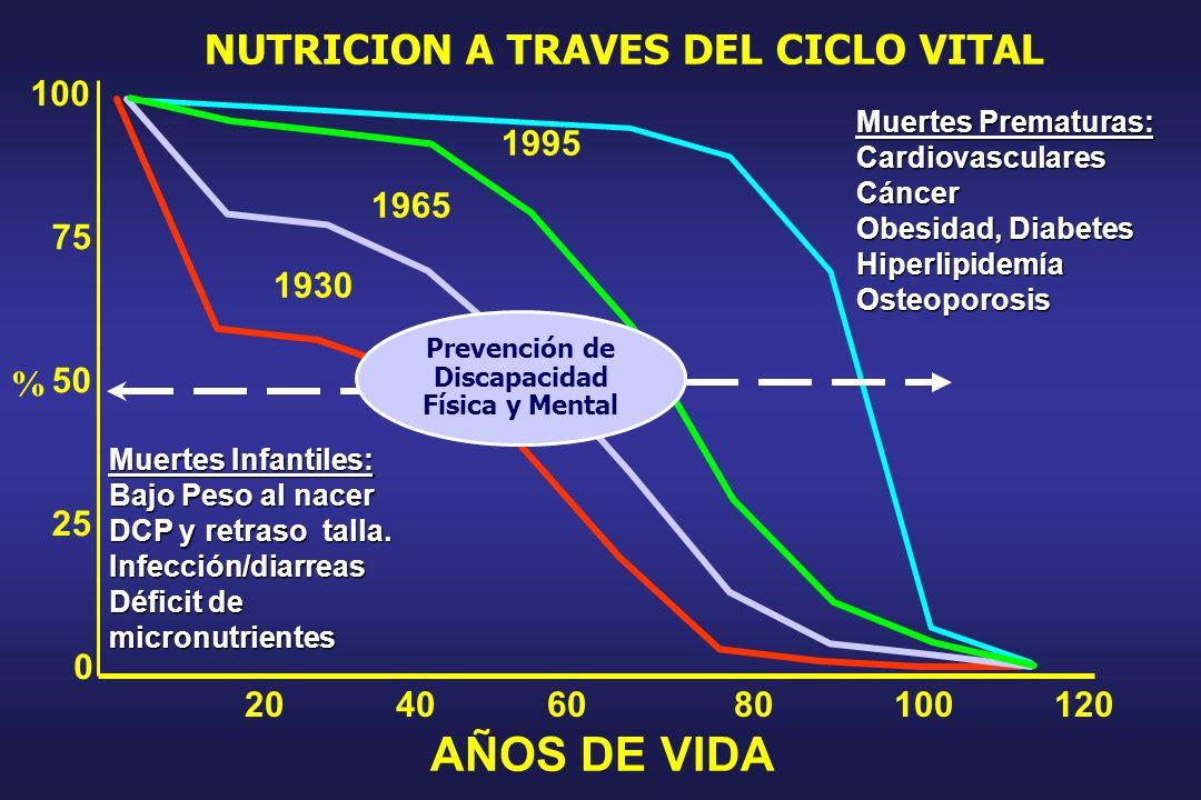 NUTRICION A TRAVES DEL CICLO VITAL