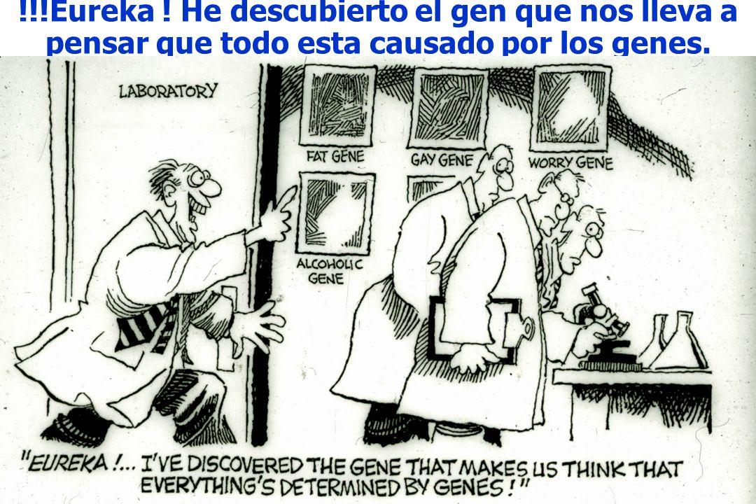 !!!Eureka ! He descubierto el gen que nos lleva a pensar que todo esta causado por los genes.