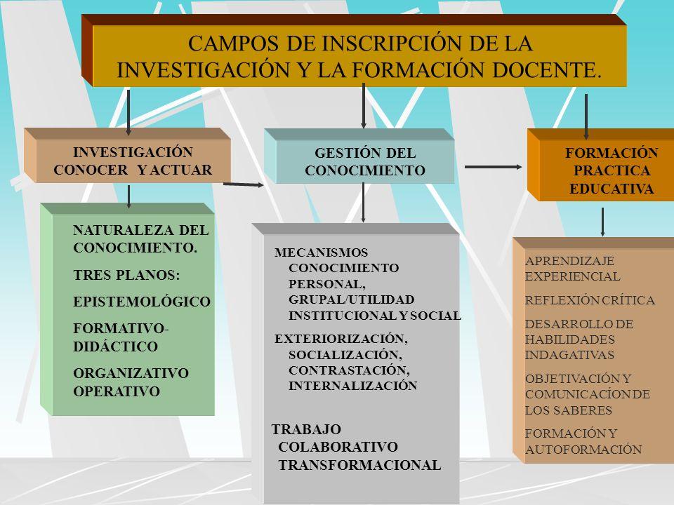 CAMPOS DE INSCRIPCIÓN DE LA INVESTIGACIÓN Y LA FORMACIÓN DOCENTE.