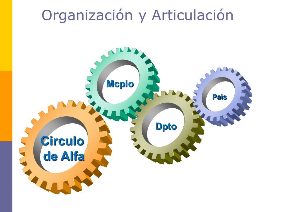 Organización y Articulación