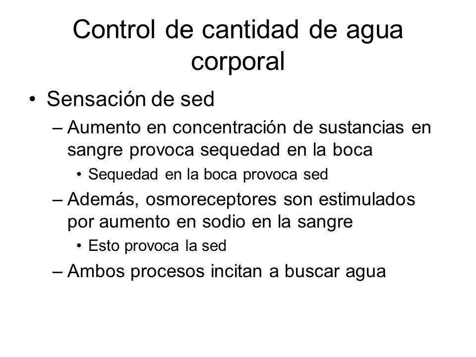 Control de cantidad de agua corporal