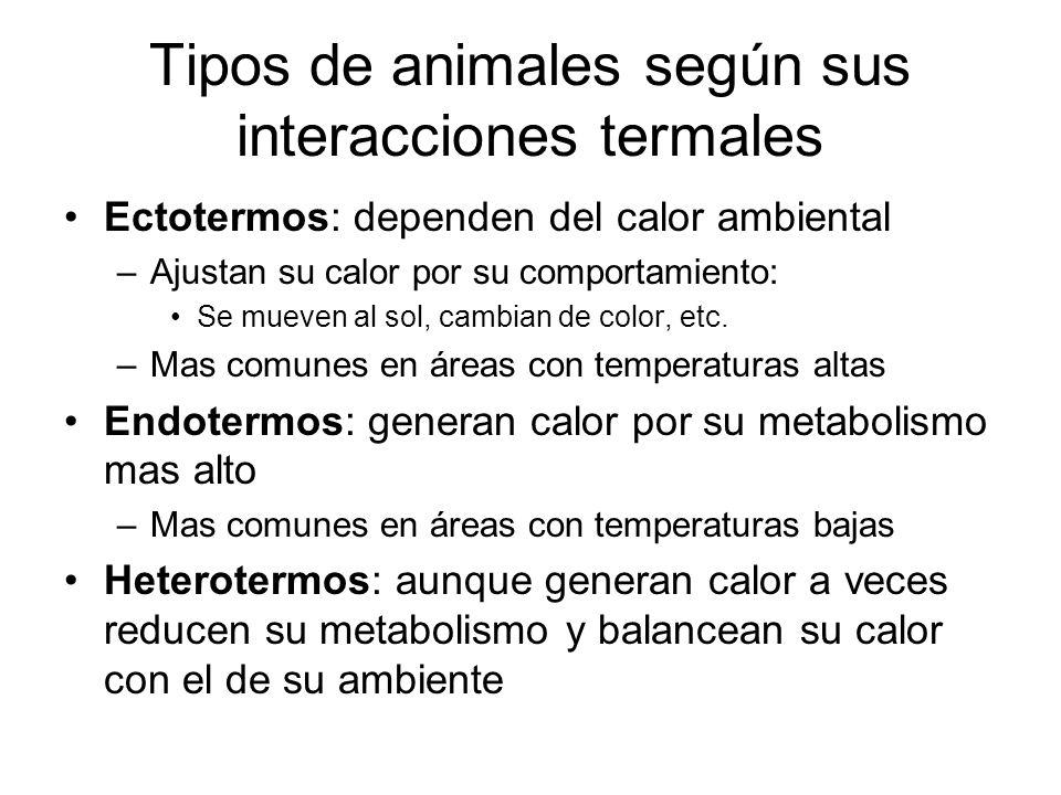 Tipos de animales según sus interacciones termales