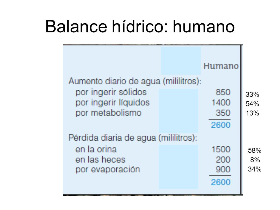 Balance hídrico: humano