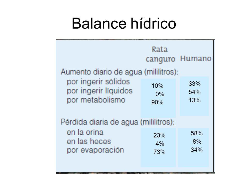 Balance hídrico 33% 10% 54% 0% 13% 90% 58% 23% 8% 4% 34% 73%