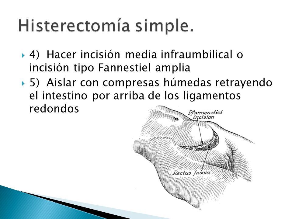 Lujoso Anatomía De La Histerectomía Molde - Imágenes de Anatomía ...