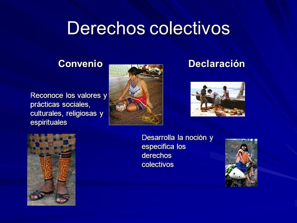 Derechos colectivos Convenio Declaración Reconoce los valores y