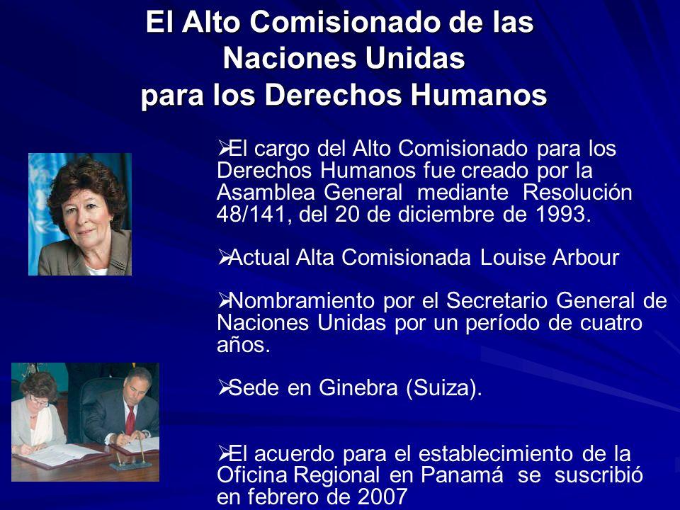 El Alto Comisionado de las Naciones Unidas para los Derechos Humanos