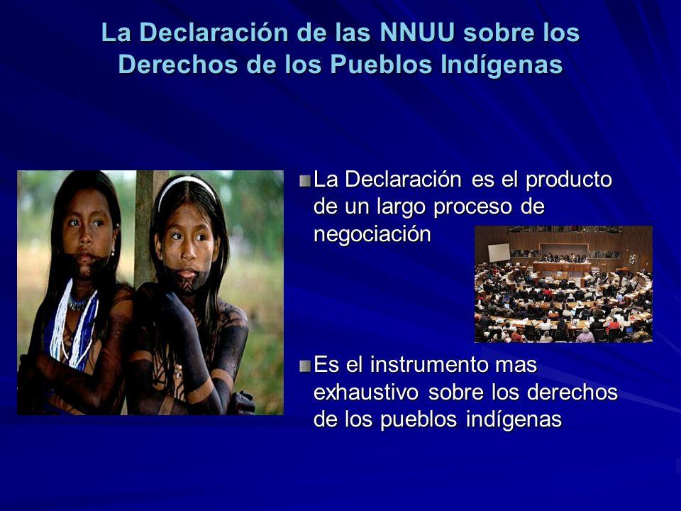 La Declaración de las NNUU sobre los Derechos de los Pueblos Indígenas